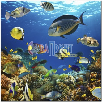 underwater_world_24b