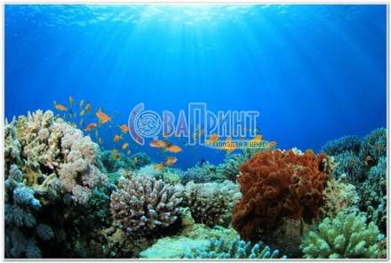 underwater_world_512b