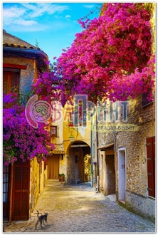 the_streets_of_europe_408b