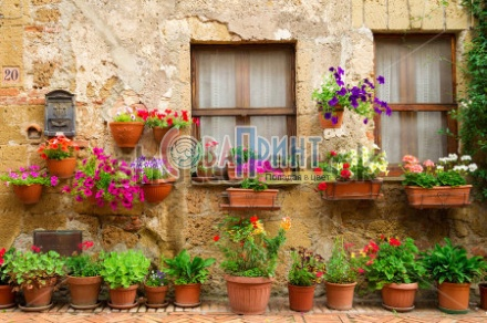 stock-photo-beautiful-street-decorated-with-flowers-in-italy-170809175
