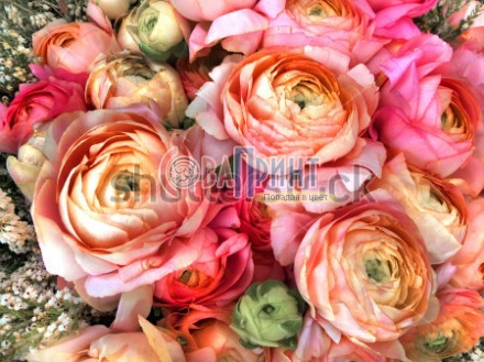 stock-photo-bouquet-of-pink-peony-floral-pattern-139363244