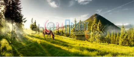 stock-photo-horse-in-the-mountains-summer-panorama-landscape-in-the-mountains-ukraine-carpathians-134373515