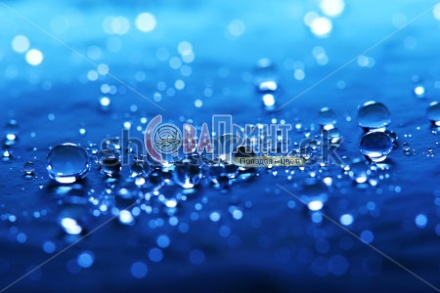 stock-photo-macro-with-blue-water-drops-on-lotus-leaf-close-up-218054476