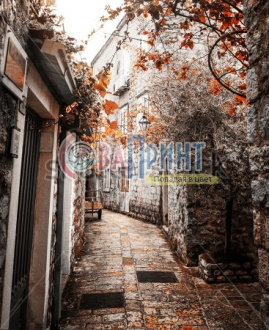 stock-photo-old-charming-street-a-lot-of-windows-with-old-wood-shutters-in-old-europe-town-220880893
