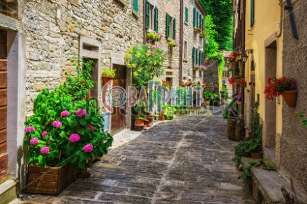stock-photo-typical-italian-street-in-a-small-provincial-town-of-tuscan-italy-europe-203625577