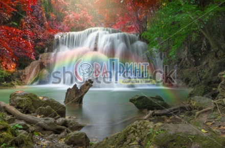 waterfalls_stock-photo-beautiful-waterfall-in-the-forest-236928403