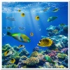 underwater_world_409b