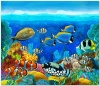 underwater_world_468b