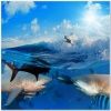 underwater_world_470b