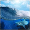 underwater_world_476b