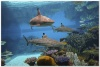 underwater_world_489b