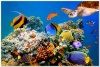 underwater_world_513b