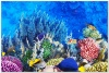 underwater_world_524b