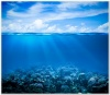 underwater_world_530b