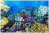 underwater_world_563b
