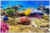 underwater_world_579b