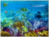 underwater_world_587b