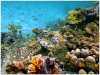underwater_world_630b