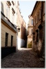the_streets_of_europe_60b