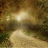 stock-photo-autumnal-scenery-with-a-country-road-80435962