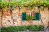 stock-photo-beautiful-window-decorated-with-flowers-in-italy-246644080