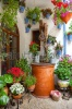 stock-photo-courtyard-with-flowers-decorated-and-old-well-cordoba-patio-fest-spain-europe-180011540