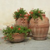 stock-photo-elegant-classic-tuscan-terracotta-plant-containers-with-geranium-flowers-on-italian-terrace-16949580