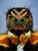 stock-photo-extreme-sharp-portrait-of-jumping-spider-with-green-eyes-taken-with-microscope-lens-11402212