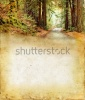 stock-photo-road-through-a-redwood-forest-on-a-grunge-background-plenty-of-copy-space-for-your-t