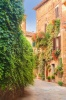 stock-photo-twisted-medieval-streets-with-colorful-flowers-and-green-plants-in-castelmuzio-italy-203639230