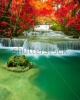 waterfalls_stock-photo-amazing-waterfall-in-colorful-forest-267699857