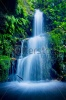 waterfalls_stock-photo-beautiful-lush-waterfall-92389306