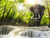 waterfalls_stock-photo-erawan-waterfall-with-an-elefhant-kanchanaburi-thailand-160961483