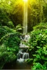waterfalls_stock-photo-tropical-waterfall-in-rain-forest-131410172