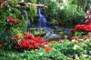 waterfalls_stock-photo-water-fall-in-garden-69788389