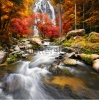 waterfalls_stock-photo-waterfall-in-the-autumn-238980715