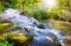 waterfalls_stock-photo-waterfall-in-the-forest-154844960