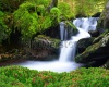 waterfalls_stock-photo-waterfall-in-the-national-park-sumava-czech-republic-244834210
