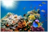 underwater_world_510b